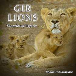 Pride of Gujarat -Gir lions by Bhavin H Jobanputra in English