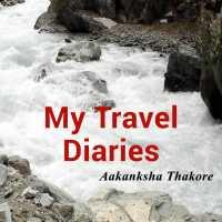 My Travel Diaries - Srinagar