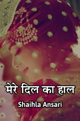 मेरे दिल का हाल by Shaihla Ansari in Hindi