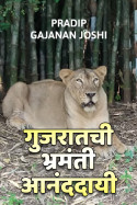 Pradip gajanan joshi यांनी मराठीत गुजरातची भ्रमंती आनंददायी