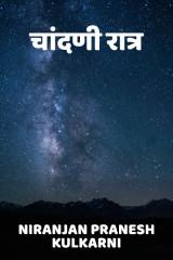 चांदणी रात्र by Niranjan Pranesh Kulkarni in Marathi