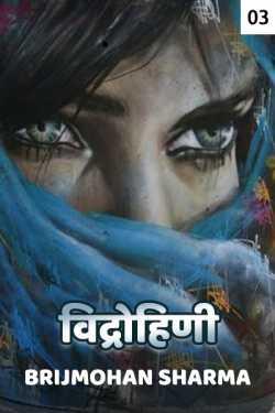 Vidrohini - 3 by Brijmohan sharma in Hindi