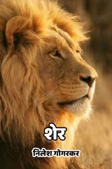 शेर by निलेश गोगरकर in Marathi