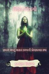 સિક્રેટ જિંદગી by kalpesh diyora in Gujarati