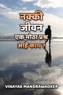 नक्की जीवन एक मोठा प्रश्न आहे काय ? by vinayak mandrawadker in Marathi