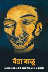 वेडा बाळू द्वारा Niranjan Pranesh Kulkarni in Marathi