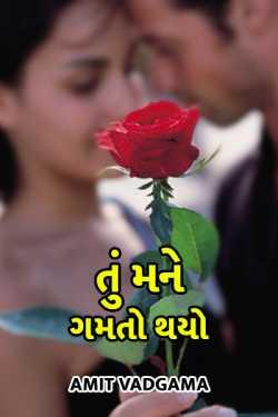 તું મને ગમતો થયો by Amit vadgama in :language