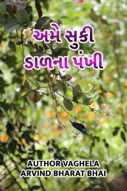 Ame suki dal na pankhi by Author Vaghela Arvind Nalin in Gujarati