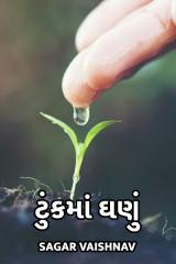 ટુંકમાં ઘણું by Sagar Vaishnav in Gujarati
