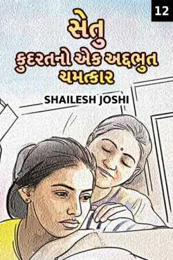 Setu - 12 by Shailesh Joshi in Gujarati
