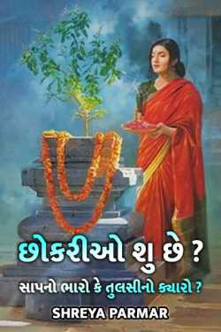 chhokario shu chhe ? by Shreya Parmar in Gujarati