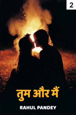 You and I - 2 by Rahul Pandey in Hindi
