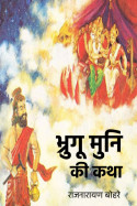 राजनारायण बोहरे द्वारा लिखित  भ्रुगू मुनि की कथा बुक Hindi में प्रकाशित