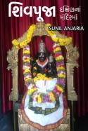 શિવપૂજા- દક્ષિણનાં મંદિરમાં by SUNIL ANJARIA in Gujarati