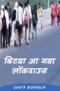 बिटवा आ गवा... लॉकडाउन by Sunita Bishnolia in Hindi