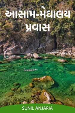 Assam meghalay tour - 4 by SUNIL ANJARIA in Gujarati