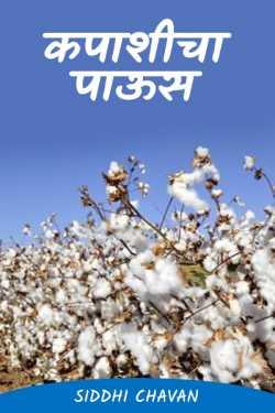 Cotton rain ... by siddhi chavan in Marathi