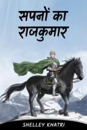shelley khatri द्वारा लिखित  सपनों का राजकुमार - 10 - अंतिम भाग बुक Hindi में प्रकाशित