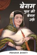 Pranava Bharti द्वारा लिखित  बेगम पुल की बेगम उर्फ़ - 6 बुक Hindi में प्रकाशित