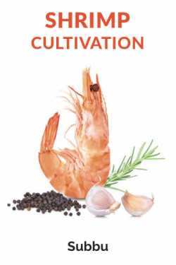 SHRIMP CULTIVATION by Subbu in English