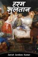 Satish Sardana Kumar द्वारा लिखित  हरम सुलतान बुक Hindi में प्रकाशित