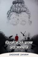 जिंदगी में दर्द कारण और समाधान by Shekhar Shivam in Hindi