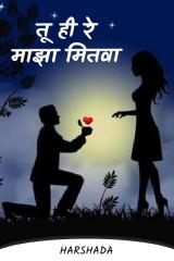 तू ही रे माझा मितवा by Harshada in Marathi