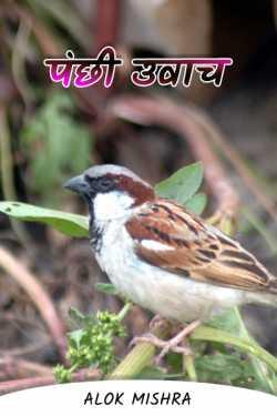 Bird prowl by Alok Mishra in Hindi