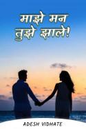 माझे मन तुझे झाले!..... by Adesh Vidhate in Marathi