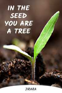 In The Seed You Are A Tree