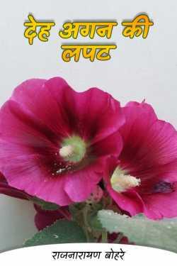 राजनारायण बोहरे द्वारा लिखित  देह अगन की लपट बुक Hindi में प्रकाशित