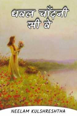Dhaval Chandni Sea Way - 3 by Neelam Kulshreshtha in Hindi