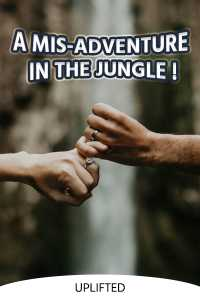 A Mis-adventure in the jungle !