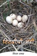 टिटवीची अंडी by शितल जाधव in Marathi