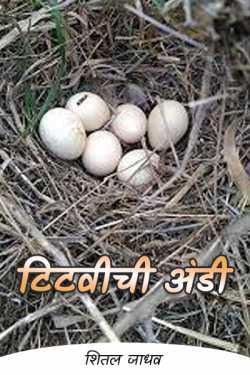 Pheasant eggs by शितल जाधव in Marathi