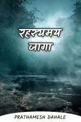 रहस्यमय जागा द्वारा Prathamesh Dahale in Marathi