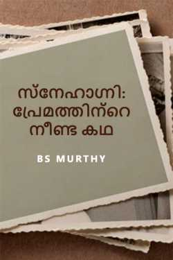 Nameless Memory by BS Murthy in Malayalam