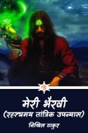 मेरी भैरवी - 2 by निखिल ठाकुर in Hindi