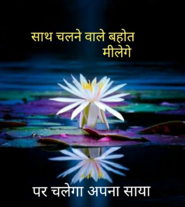 Hindi Thought by Bharat vaghela : 111079620