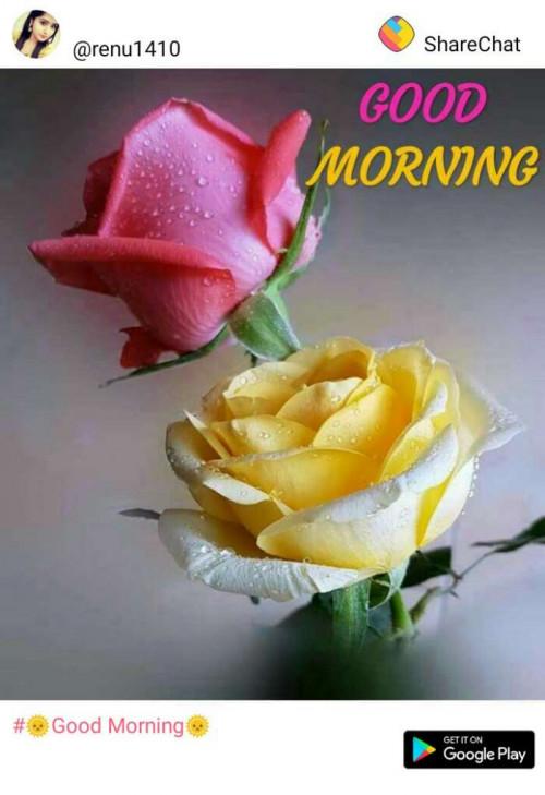 Post by Manoj Solanke on 04-Feb-2019 06:45am