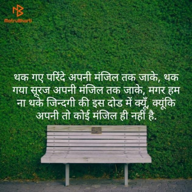 Hindi Quotes by Mohan Chadar : 111159742