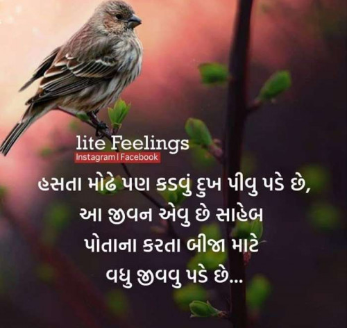 Post by Vipul on 07-May-2019 11:42am