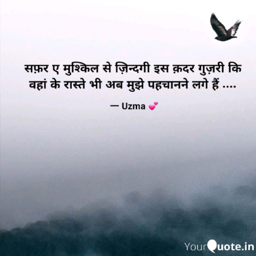 Post by Uzma on 30-May-2019 05:24pm