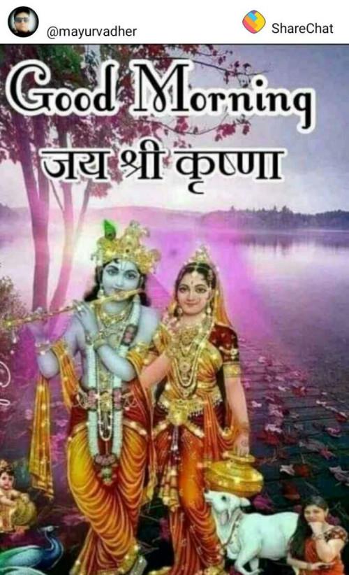 Post by Vinu M Patel on 25-Jun-2019 09:01am