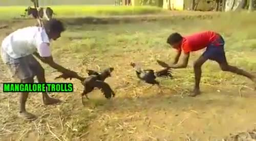Dipak Chavda videos on Matrubharti