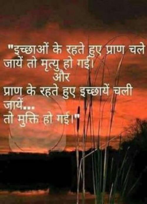 Post by Pooja Mishra on 06-Aug-2019 10:36pm