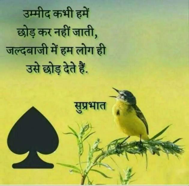 Gujarati Good Morning by Khushbu Patel : 111253484