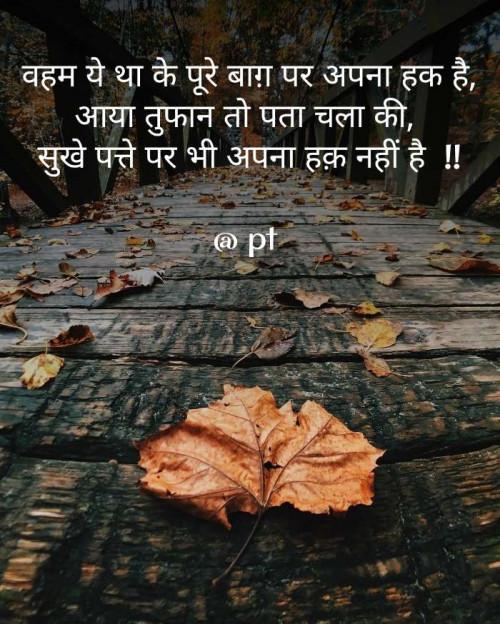 Post by PANKAJ on 19-Sep-2019 05:02pm
