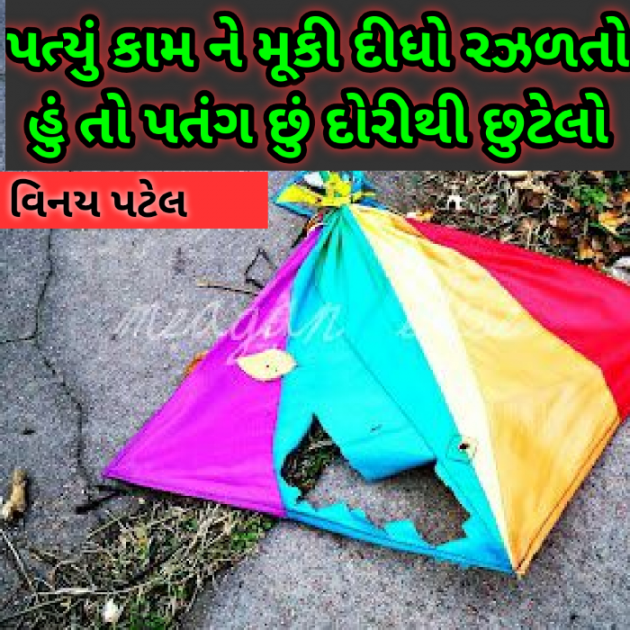 Gujarati Shayri by Patel Vinaykumar I : 111363462