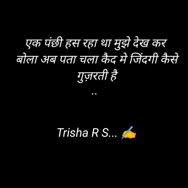 Hindi Thought by Trisha R S : 111373184